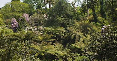 Lost Gardens of Heligan is Britse Garden of the Year 2018