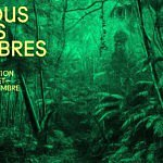 Fondation Cartier Paris / Tentoonstelling 'Nous les arbres'  [VIDEO]