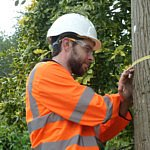 Publieke consultatie Technical standards in tree work (TEST)